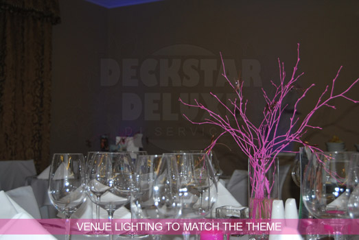 Theme Matched Venue Lighting with Cheltenham Wedding DJ